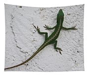 Anole On Stucco Tapestry