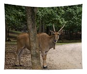 Antelope Behind A Tree Tapestry