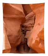 Antelope Canyon 14 Tapestry
