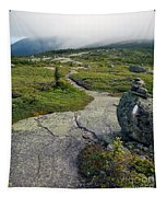 Appalachian Trail Mountain Path Saddleback Maine Tapestry