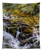 Appalachian Mountain Waterfall Tapestry