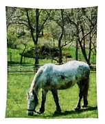 Appaloosa In Pasture Tapestry