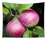 2 Apples On Tree Tapestry