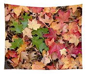 Arboretum - Oak Tapestry