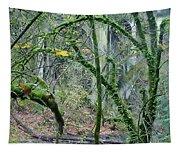 Arch  Bridge Through Trees Tapestry