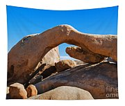 Arch Rock - Joshua Tree National Park  Tapestry