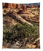 Arches Spires Tapestry