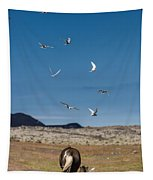 Arctic Terns With Mare And Foal Tapestry