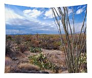 Arizona Afternoon Tapestry
