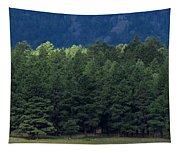 Arizona Forest Tapestry