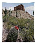 Arizona Icons Tapestry