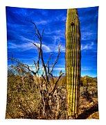 Arizona Landscape IIi Tapestry