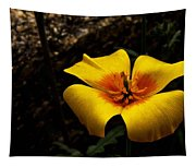 Arizona Poppy Tapestry