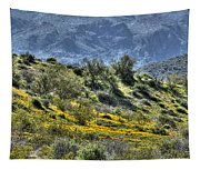 Arizona Spring Tapestry