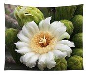 Arizona State Flower The Saguaro Blossom Tapestry
