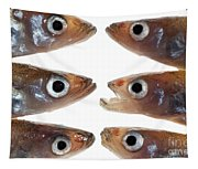 Arrangement Of Small Fish Smelt Tapestry