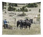 Art Of Horse Plowing Tapestry
