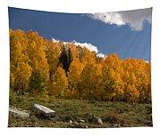 Aspen On The Road To Telluride Dsc07397 Tapestry