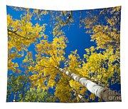 Aspen Sky Tapestry