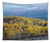 Aspens And The Tetons Tapestry