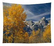 1m9352-aspens In Autumn And The Teton Range Tapestry