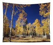Aspens In Fall Tapestry