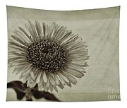 Aster With Textures Tapestry