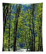 At Peace Tapestry