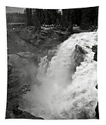 Athabasca Falls Tapestry