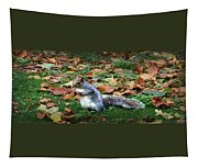Attentive Squirrel Tapestry