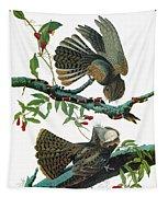 Audubon Chuck-will's Widow Tapestry