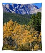 Autumn Aspens And Longs Peak Tapestry