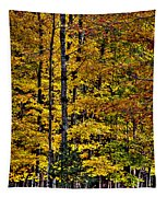 Autumn At Eagle Bay Tapestry
