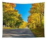 Autumn Back Road Tapestry