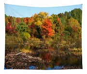 Autumn Beaver Pond Reflections Tapestry