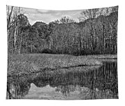 Autumn Black And White Tapestry