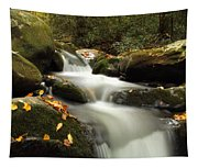Autumn Cascades In Tennessee Tapestry