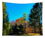 Autumn Color On Maple Ridge Tapestry