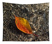 Autumn Colors And Playful Sunlight Patterns - Cherry Leaf Tapestry