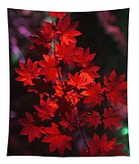 Autumn Colors Early Tapestry