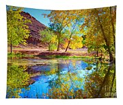 Autumn Colours In Moab Tapestry