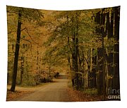 Autumn Country Road Tapestry