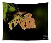 Autumn Tapestry
