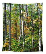 Autumn Forest Detail Tapestry