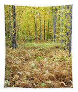 Autumn Forest - White Mountains New Hampshire Tapestry