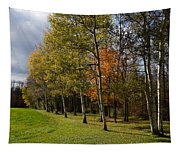 Autumn Forests And Fields Tapestry
