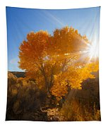Autumn Golden Birch Tree In The Sun Fine Art Photograph Print Tapestry
