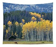 1m9359-autumn In Jackson Hole Ranch Country Tapestry