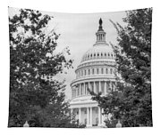 Autumn In The Us Capitol Bw Tapestry