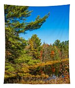Autumn Lake 4 Tapestry